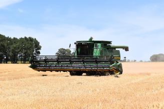В Ивановской области на70% завершена уборка зерновых культур