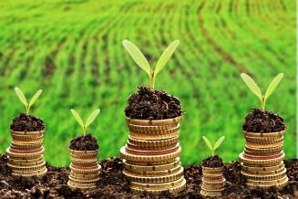 В Красноярском крае аграриям перечислили 75% средств господдержки, предусмотренных на 2021 год