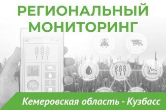 Еженедельный бюллетень о состоянии АПК Кемеровской области на 9 августа