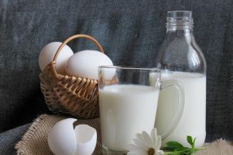 В Пензенской области сельхозорганизации увеличили производство молока и яиц