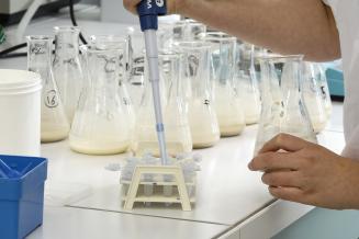 Минсельхоз России утвердил новые правила ветеринарно-санитарной экспертизы молока и молочных продуктов