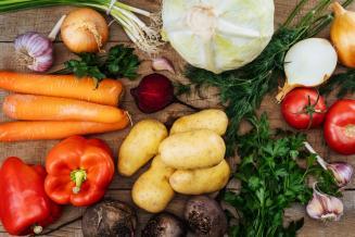 В России на 10% увеличился сбор овощей открытого грунта