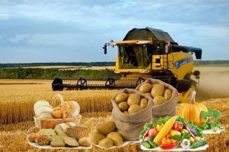 Обзор цен сельхозтоваропроизводителей на основные товары в Рязанской области