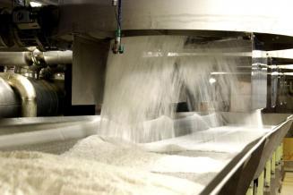 В России к 9 августа выпущены первые 19тыс.т сахара из свеклы нового урожая