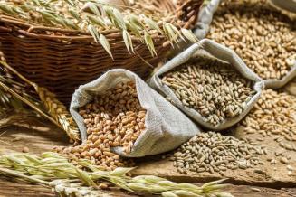 Экспорт ржи из России увеличился в 11 раз, риса — в 5 раз за год