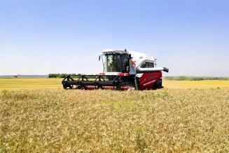 В Ростовской области урожай ранних зерновых культур превысил 11 млн т