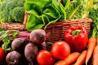В Подмосковье собрано более 27,7 тыс. т овощей открытого грунта