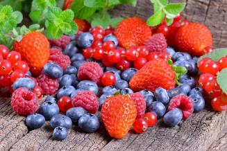 На гранты «Агростартап» вАдыгее реализуют 13проектов повыращиванию ягод