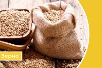 Дайджест «Зерновые»: вРоссии растет производство и экспорт продукции глубокой переработки зерна