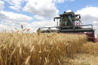 ВКалужской области план уборки зерновых и зернобобовых выполнен на 19%