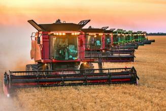 В Тульской области собрано 1 942,8 тыс. т зерна