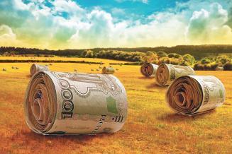 Воронежские аграрии получили более 3,6млрдруб. наразвитие АПК