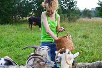 Минсельхоз России создает волонтерское фермерское движение