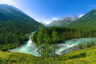 В Алтайском крае планируют создать агробиотехнопарк