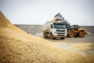 Омская область увеличила экспорт продовольствия исельскохозяйственного сырья на33,3%