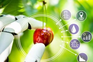 Агросектору прописан рост. Как и под влиянием каких факторов будет развиваться АПК до 2030 года