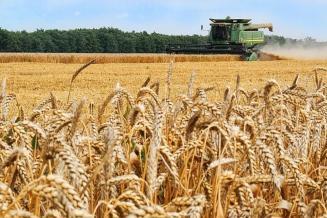 В Кабардино-Балкарии убрано 92,9 тыс. га зерновых и зернобобовых культур