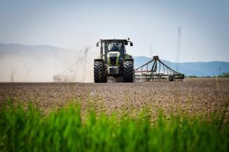 Темпы озимого сева в Ростовской области на 60% опережают прошлогодние