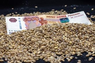 Регионам выделят свыше 10 млрд рублей в рамках нового механизма зернового демпфера