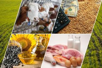 Правительство России внесло изменения в госпрограмму развития сельского хозяйства