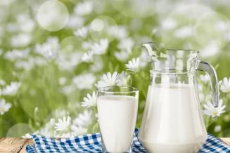 Нижегородская область обеспечена молоком и молокопродуктами собственного производства на 80%