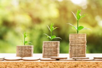 В Ингушетии получателям перечислено 295,4 млн руб. субсидий на развитие АПК