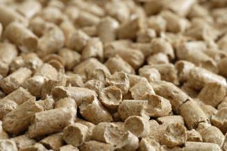 Россия нарастила экспорт соевых жмыхов и отрубей для корма животных