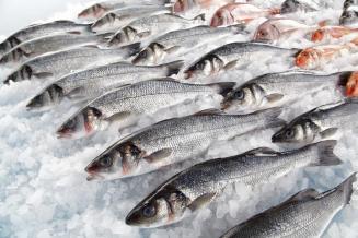 Россия перенаправила экспорт рыбной продукции из Китая в Корею, Японию и ЕС