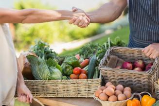 В Тюменской области доля регионального финансирования на поддержку фермеров достигает 73%