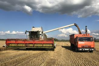 В РФ осталось убрать зерно почти с пятой части посевных площадей