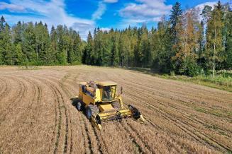 Сбор зерна в России на11октября превысил 111млнт