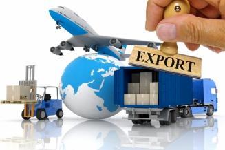Экспорт продукции АПК из России с начала 2021 года вырос на 19%