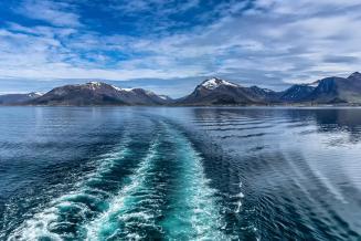 Россия и Норвегия утвердили лимиты вылова рыбы в Баренцевом и Норвежском морях в 2022 году