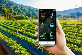 В 2022 году Алтайский край приступает к реализации проекта по созданию цифрового сервиса агрометеоданных