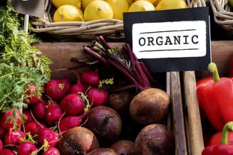 В России представили первый атлас национальной органической продукции