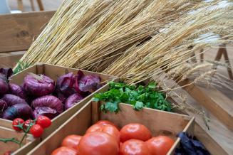 Страны ЕАЭС до конца 2022 года подпишут соглашение о создании общего рынка органической сельхозпродукции