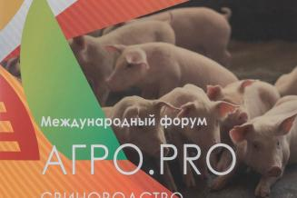 Международный форум «АГРО.PRO: Свиноводство»