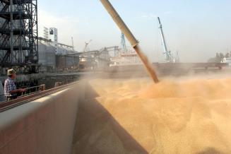 Алжир становится перспективным рынком для российской пшеницы