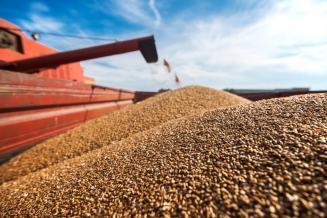 «Центр Агроаналитики» утвержден оператором Федеральной системы прослеживаемости зерна